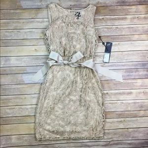 NWT Adrianna Papell Embroidered Lace Belted Dress
